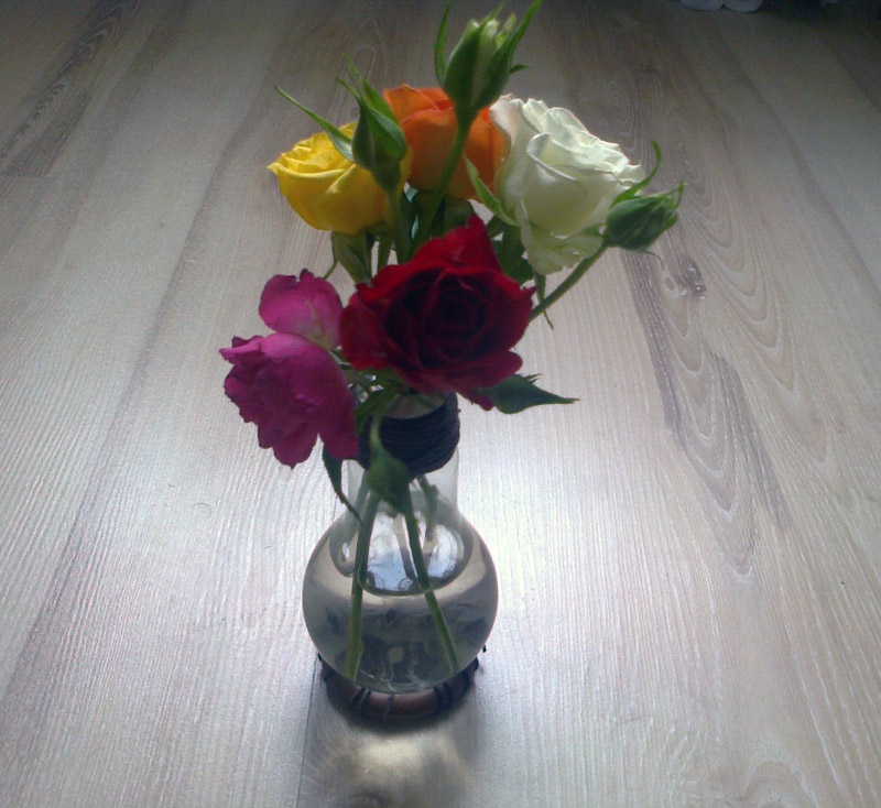 flowers roses bulb makeup4all