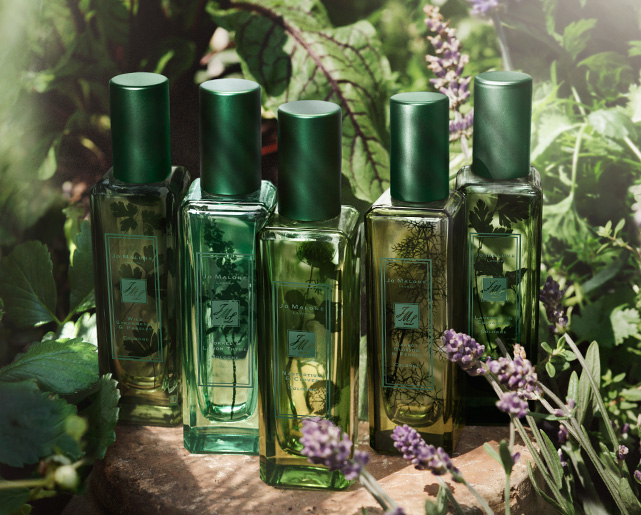 Jo Malone The Herb Garden Cologne Collection for Spring 2016 (2)