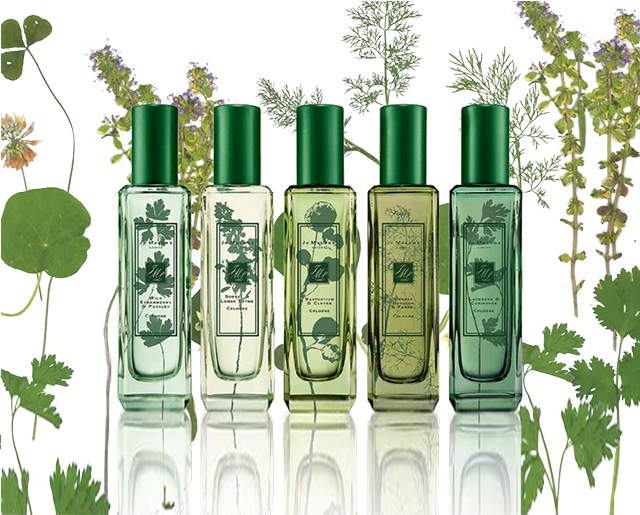 Jo Malone The Herb Garden Cologne Collection for Spring 2016 (3)